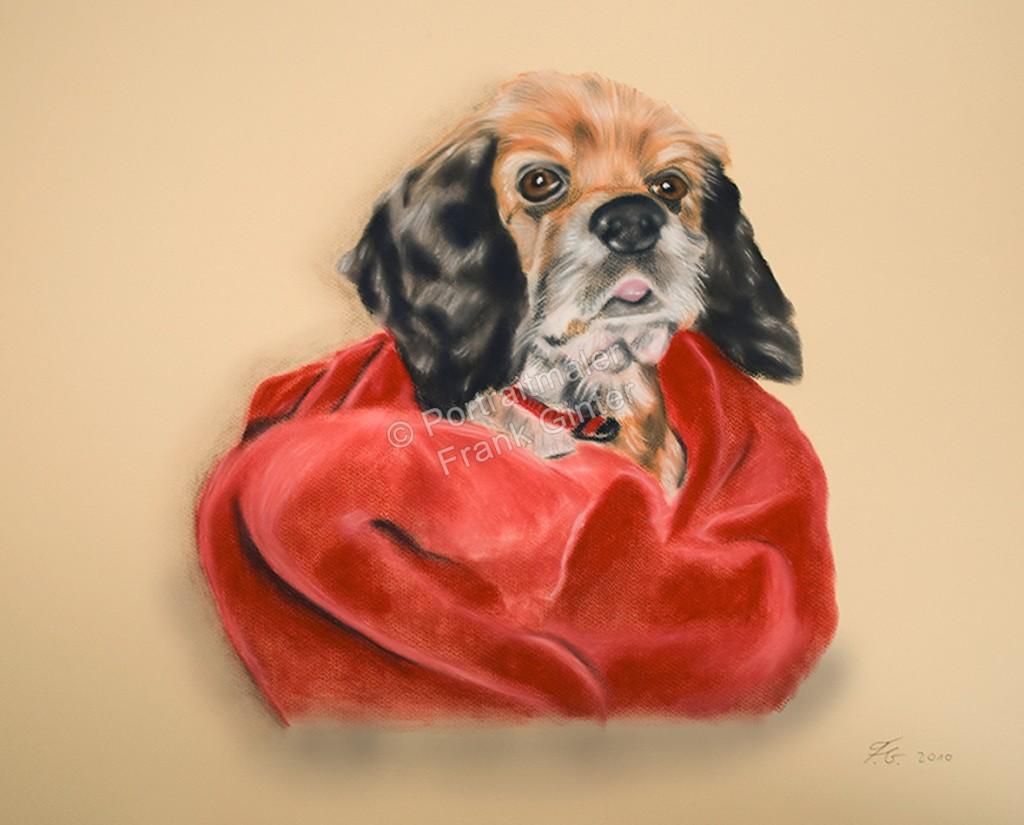 Handgemalte Bilder, Tiermalerei, Bilder malen lassen, Tiermaler, Hund, Tierportraits, Hundeportrait, Hundegemälde