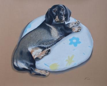 Handgemalte Bilder, Tiermalerei, Bilder malen lassen, Tiermaler, Hunde, Tierportraits, Hundeportrait, Hundegemälde Rauhaardackel