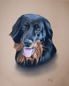 Handgemalte Bilder, Tiermalerei, Bilder malen lassen, Tiermaler, Hunde, Tierportraits, Hundeportrait, Hundegemälde