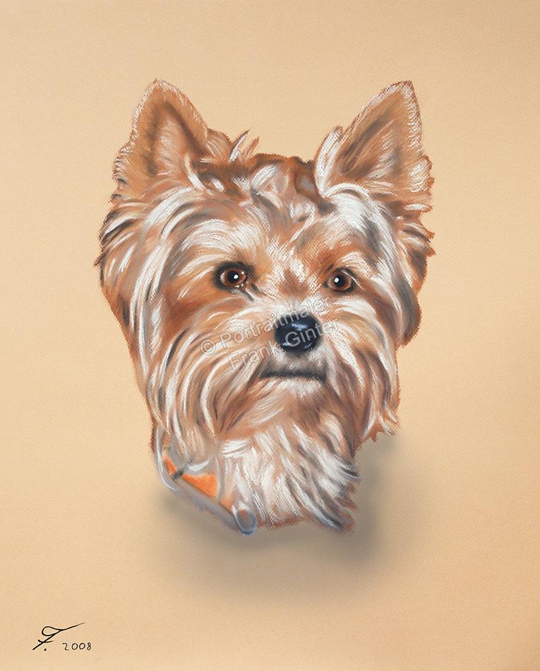 Handgemalte Bilder, Tiermalerei, Bilder malen lassen, Tiermaler, Hunde, Tierportraits, Hundeportrait, Hundegemälde Yorkshire Terrier