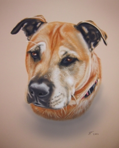 Handgemalte Bilder, Tiermalerei, Bilder malen lassen, Tiermaler, Hunde, Tierportraits, Hundeportrait, Hundebilder