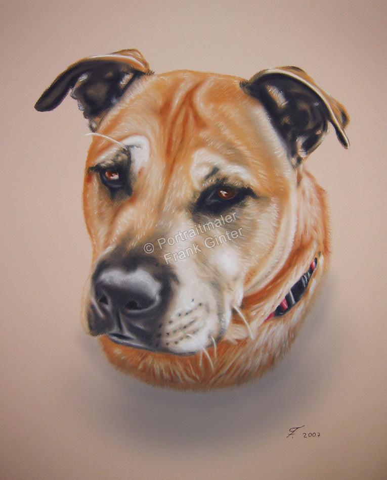 Handgemalte Bilder, Tiermalerei, Bilder malen lassen, Tiermaler, Hunde, Tierportraits, Hundeportraits, Hundegemälde