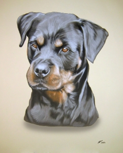 Handgemalte Bilder, Tiermalerei, Bilder malen lassen, Tiermaler, Hunde, Tierportraits, Hundeportrait, Hundegemälde, Rottweiler