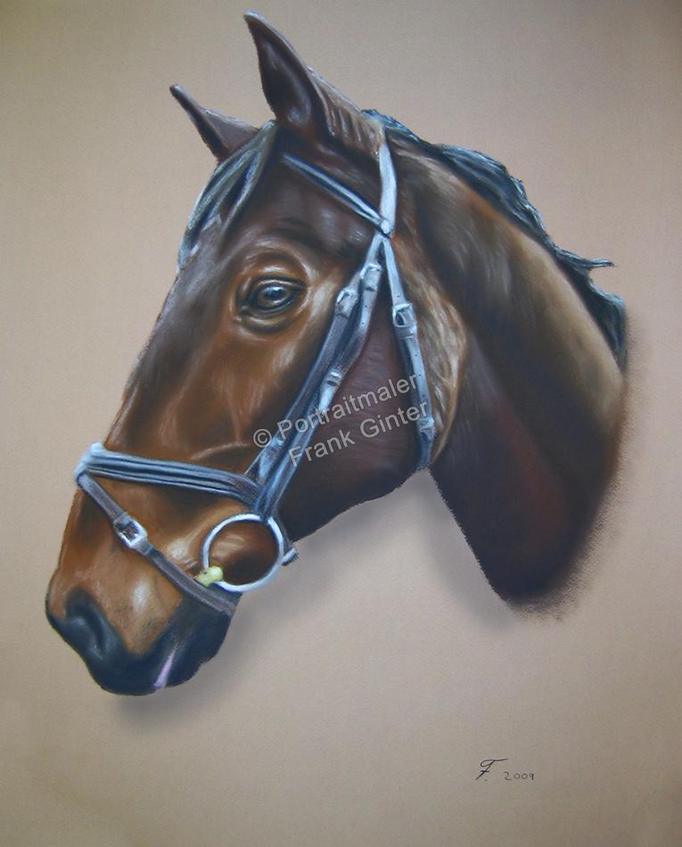 Pferdeportrait, Gemalte Bilder, Tierportraits, Tiermalerei, Tierportraits malen lassen, Pferdegemälde, Tierportraits vom Foto