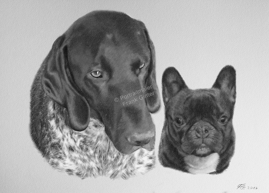 Bleistiftzeichnungen, Tierportraits Hunde, Bleistiftzeichnung, Tierzeichnungen, Hunde Zeichner Bleistift