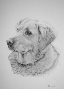 Handgezeichnete Hundeporträts bestellen