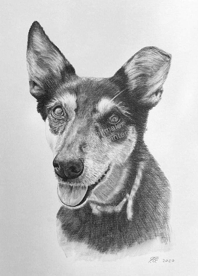 Handgezeichnete Hundebilder